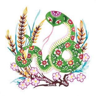 Xem Phong thủy người tuổi Tỵ năm Bính Thân 2016